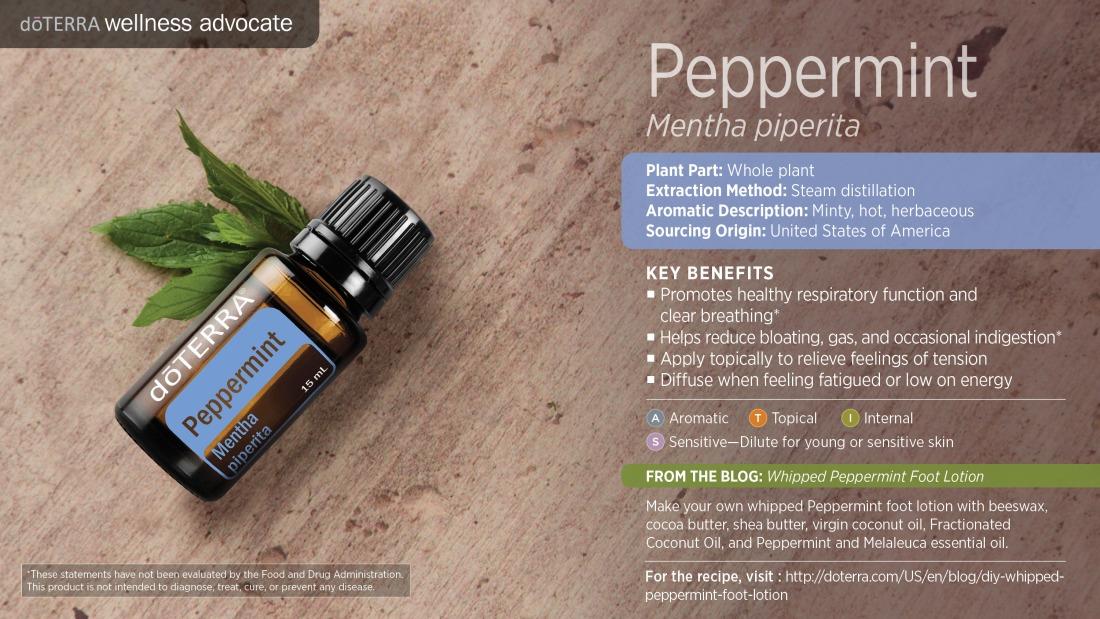 wa-peppermint (1)